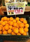 不知火 170円(税抜)