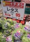 レタス 95円(税抜)