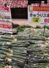胡瓜3本袋 95円(税抜)
