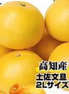 土佐文旦 2Lサイズ 158円(税抜)