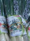 葉たまねぎ 198円(税抜)