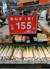 長ねぎ 155円(税抜)