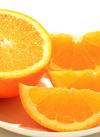 マイクおじさんのネーブルオレンジ小玉6個入り1袋 380円(税抜)