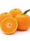 オレンジ 297円(税抜)