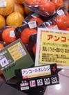アンコール 298円(税抜)