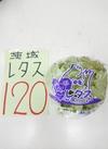 レタス 20円引