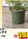 グロウコンテナ 30型 各色 598円
