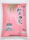 仁井田米(にこまる70%香り米30%) 1,250円(税抜)