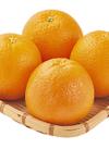 ネーブルオレンジ 85円(税込)