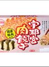 宇都宮肉餃子 171円(税込)