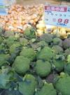 大山ブロッコリー 98円(税抜)