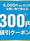 6,000円(税別)以上のお買物で使えるクーポン! 300円引