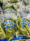 サラダ菜 92円(税抜)