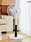 フルリモコン式リビング扇風機SF-319FR 3,970円(税抜)