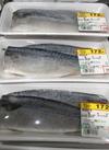 塩さば🐟 172円(税抜)