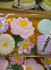 花だより 300円(税抜)