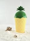 夏にぴったりなパイナップルとサボテンのかわいいグッズ 100円(税抜)