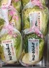 旨味昆布白菜 198円(税抜)