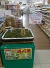 お茶詰め詰め 1,000円(税抜)