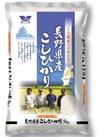 松本ハイランドこしひかり 1,790円(税抜)