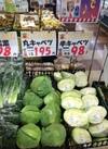 1/2カットキャベツ 98円(税抜)