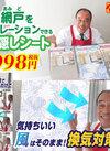 網戸をデコレーション出来る目隠しシート 998円(税抜)
