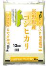 長野県産 コシヒカリ 3,500円(税抜)