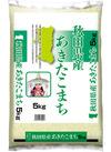 秋田県産 あきたこまち 1,670円(税抜)