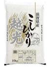 こしひかり 3,280円(税抜)