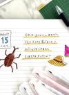 カラー筆ペン&カラーボールペン 100円(税抜)