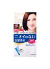サロンドプロ 無香料ヘアカラー 早染めクリーム 498円(税抜)