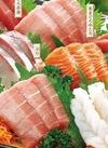 本まぐろたっぷり刺身盛合せ〈真鯛ゆず〆入〉 1,980円(税抜)