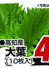 大葉 49円(税抜)