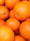甘く育てたオレンジ 106円(税込)