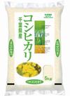 新米コシヒカリ 1,638円(税抜)