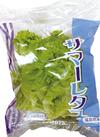 サマーレタス 77円(税抜)