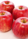 りんごサンつがる 100円(税抜)