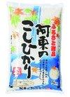 新米阿東のこしひかり 1,780円(税抜)