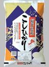 こしひかり 2,980円(税抜)