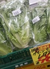 グリーンリーフレタス 98円(税抜)