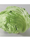 三ツ星野菜のレタス 158円(税抜)