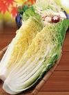 白菜 97円(税抜)