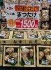 松茸 1,500円(税抜)