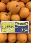 ネーブルオレンジ 75円(税抜)