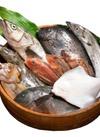 お魚よりどり 735円(税込)