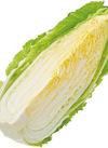 白菜 57円(税抜)