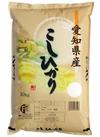 愛知県産 こしひかり 3,218円(税込)