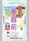 華越前 2,980円(税抜)