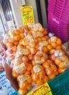 知多みかん 258円(税抜)