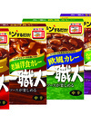 カレー職人厳選4品 84円(税込)